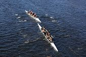 Twin Cities (Top) and South Niagra Rowing Club (bottom) race in the Head of Charles Regatta