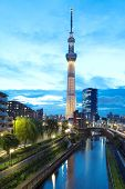 View of Tokyo Sky Tree