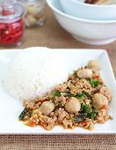 Basil Fried Rice with Pork, Thai food