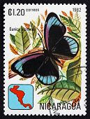 Postage Stamp Nicaragua 1982 Midnight Blue, Butterfly