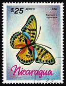 Postage Stamp Nicaragua 1986 Euphaedro Cyparissa, Butterfly