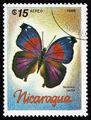 Postage Stamp Nicaragua 1986 Lilac Beauty, Butterfly