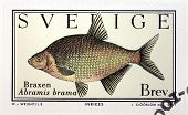 Common Bream Stamp