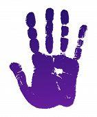 Old Man Violet Hand Print