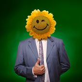 Smiling Sunflower Head Man In Suit Coat With Present Thumbs Up Over Green