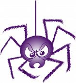 image of bad mood  - Terrific purple spider while going down thanks to its thread - JPG