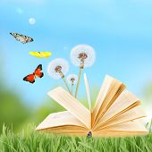 Old book with butterflies outdoors