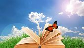 Old book with butterfly outdoors