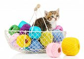 Cute little kitten in basket with thread isolated on white