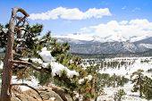 1Rocky Mountain National Park snow scene