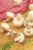 Fresh Edible Portabello Mushroom Champignon And Parsley