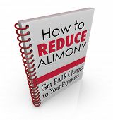 How to Reduce Alimony words as title on a book offering legal advice, assistance, information or tip