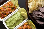 Salsa And Guacamole Appetizer