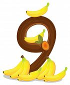 Illustration of the nine bananas on a white background