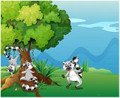Illustration of the playful lemurs playing near the big tree