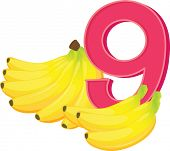 Illustration of the nine ripe bananas on a white background