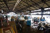 Tsukiji Fish Market,Tokyo