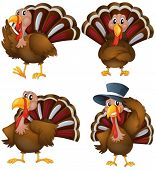 stock photo of creatures  - Illustration of a turkey set - JPG