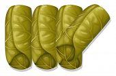 Illustration of vegetable wrap in rolls