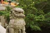 chinese guardian lion near oriental temple