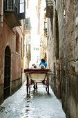 foto of chariot  - Tourist chariot in the old city of Palma de Mallorca - JPG