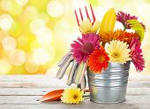 Colorful flowers and garden tools on wooden table with sunny bokeh