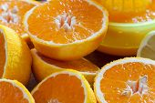foto of juicer  - Juicy halved oranges and a juicer in the background as closeup - JPG