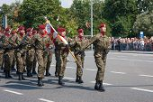 Airborne Brigade, Polish Armed Forces Day