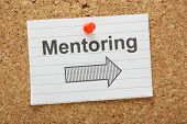 Mentoring This Way