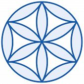 Baby Flower Of Life