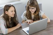 Siblings using laptop together at home