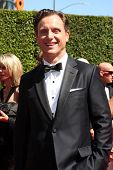 LOS ANGELES - AUG 16:  Tony Goldwyn at the 2014 Creative Emmy Awards - Arrivals at Nokia Theater on