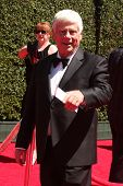 LOS ANGELES - AUG 16:  Robert Morse at the 2014 Creative Emmy Awards - Arrivals at Nokia Theater on