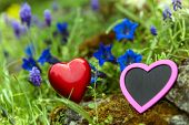 Two Hearts Between Gentian And Grape Hyacinth Meadow