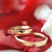 Roses Petals And Rings