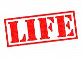 Life Rubber Stamp