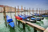Moored Gondolas At Dock In Venice