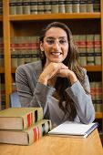 Pretty lawyer in the law library at the university