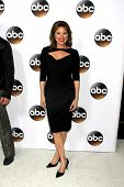 LOS ANGELES - JAN 14:  Nancy Lee Grahn at the ABC TCA Winter 2015 at a The Langham Huntington Hotel on January 14, 2015 in Pasadena, CA