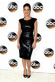 LOS ANGELES - JAN 14:  Kelly Monaco at the ABC TCA Winter 2015 at a The Langham Huntington Hotel on January 14, 2015 in Pasadena, CA
