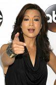 LOS ANGELES - JAN 14:  Ming-Na Wen at the ABC TCA Winter 2015 at a The Langham Huntington Hotel on January 14, 2015 in Pasadena, CA
