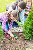 Mother And Daughters Planting Tulip Bulbs