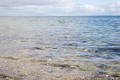 View On The Baltic Sea In Copenhagen