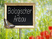 Chalkboard With German Text Biologischer Anbau