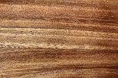 A wood texture, macro shot