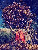 a man playing in autumn leaves toned with a retro vintage instagram filter effect