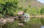 Thai Pavillion In The Park