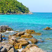 Nature Scene Tropical Beach And Sea In Koh Larn Island