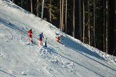 Downhill Skiers On  Piste
