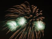 image of night-blooming  - spectacular beautiful bright fireworks with three green fire flowers bloom in the night black sky - JPG